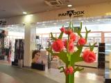 paradox-perfumery-tria-city-centre-burgas-1